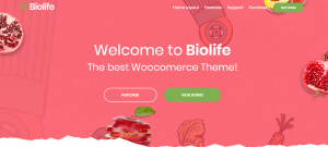 Biolife theme, best RTL support theme