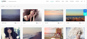 oyster theme, wordpress photography theme