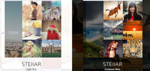 stellar theme, wp theme for website