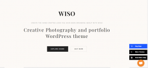 wordpress theme, wiso theme