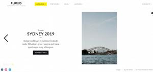 fluxus theme, Portfolio WordPress Themes