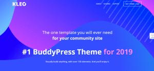Kleo theme, WordPress BuddyPress Themes