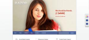 WordPress BuddyPress Themes, razor theme