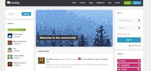 buddy theme, WordPress BuddyPress Themes