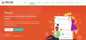 buddypress theme, WordPress BuddyPress Themes