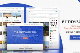 Best WordPress BuddyPress Themes Of 2020