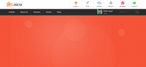 WordPress BuddyPress Themes, cinematix theme