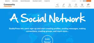 community jections theme, WordPress BuddyPress Themes