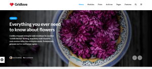 gridlove theme, Selling WordPress Magazine Themes