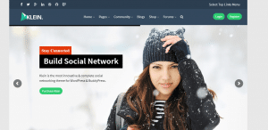 klein theme, best free and paid WP theme