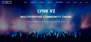 lynk theme, best and free WP theme