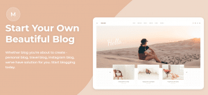 malina theme, best free and paid theme