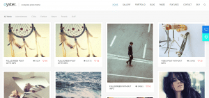 WordPress Photography Themes, oyster theme