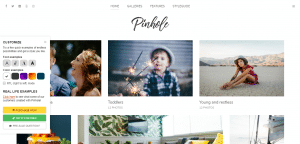 oinhole theme, best paid and free WP theme