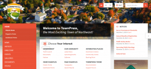 townpress theme, best free and paid WP theme