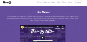 ultra theme, best free and paid WP theme